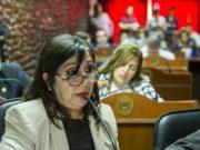 Cecilia Guerrero, Diputada Cecilia Guerrero
