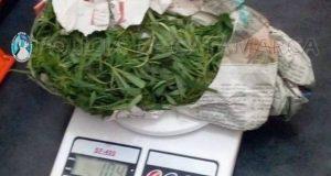 Policia de Catamarca, Secuestro de Marihuana