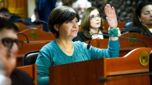 Adriana Díaz, Diputada Adriana Díaz