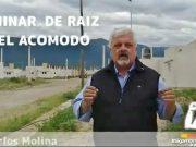 Carlos Molina, Diputado Carlos Molina